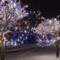 новогодняя ночь :: tina kulikowa