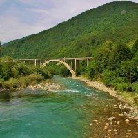 Мост через Тару :: Natali Positive