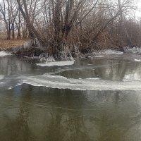Прогулка по первому льду :: натальябонд бондаренко