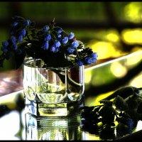 Цветы (4) :: Юрий ГУКОВЪ