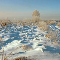 По хрустящему морозу... :: Нэля Лысенко