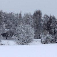 Зимний пейзаж :: Жанна