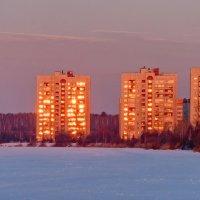Морозным утром :: Sergey Sapozhnikov