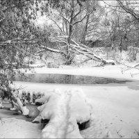 Зимние мостки... :: марк
