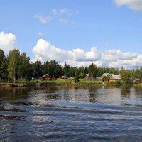 Река Свирь :: Вера Щукина