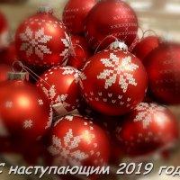 С наступающим Новым 2019 годом, друзья! :: Ольга Русанова (olg-rusanowa2010)