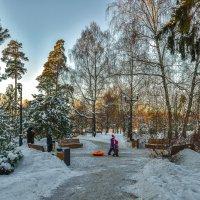 Пргулки в Зимнем Парке :: юрий поляков