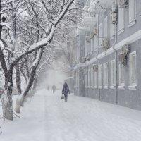 А снег идет... :: Светлана Prolubshikov@