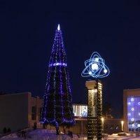 Городская елка :: Ольга