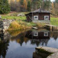 Разрушенная ГЭС на Соскуанйоки. Карелия. :: Наталия Владимирова