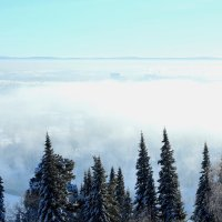 Вид сверху лучше! :: Дмитрий Арсеньев