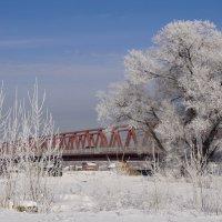 У моста :: Наталия Григорьева