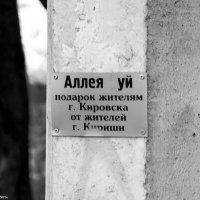 Подарочек оценен :: ИгорьОк Бородин