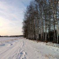 Зимняя акварель... :: Нэля Лысенко