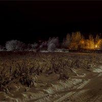 Зарисовка в Новогоднюю ночь... :: Александр Никитинский