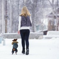 Ах как в парке!!!!!! :: Лариса Сафонова