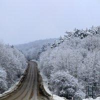 Зимняя сказка. :: Геннадий Валеев