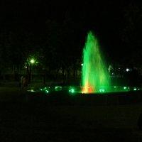 Фонтан в парке :: Людмила Монахова