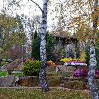 Осень в парке! :: Семён Пензев