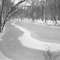 У замерзшей воды :: Сергей Тарабара