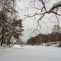 Зимой :: Александр Орлов