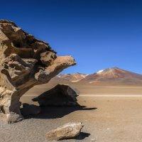 arbol de piedra в пустыни Силоли (Боливия) 4588 м над у.м. :: Георгий А