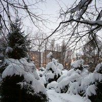 Зима в городе  ... :: Лариса Корж
