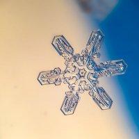 снежинка :: Алексей Козлов