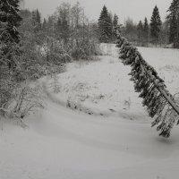 1 января 2019 :: skijumper Иванов