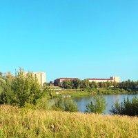 4.озеро в августе :: Николай Мартынов