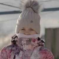 Мороз до 20 :: Александр