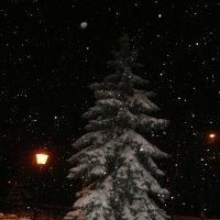 Тиха Рождественская ночь..... :: Алёна Савина