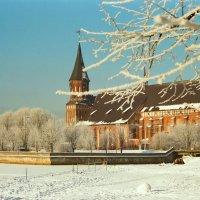 Зимний остров :: Сергей Карачин