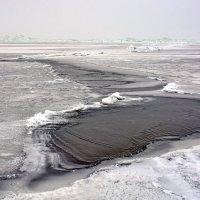 Чудское озеро. :: Леонид Иванчук