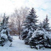 Белым снегом всё вокруг замело-засыпало......... :: Любовь К.