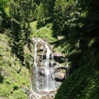 Водопад :: Светлана Коваленко