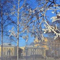 Мороз  - волшебник :: Татьяна Ларионова