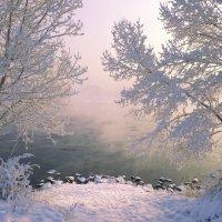 Мороз и солнце Нового года :: galina tihonova