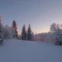 -36 морозец!!! :: Олег Кулябин