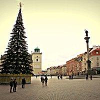 Варшава :: Ольга