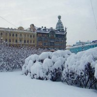На Невском :: Вера Щукина