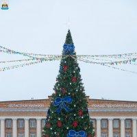 Великий Новгород. Новогодняя елка (2019 год) :: Алексей Шаповалов Стерх