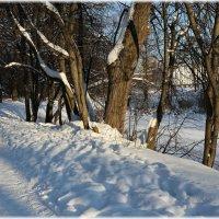 В январе :: ZNatasha -