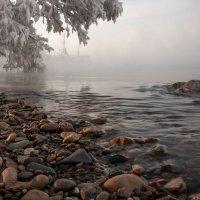 Свет, туман и мороз... :: Сергей Герасимов