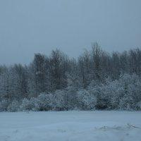 зимний пейзаж :: Леонид Чащин