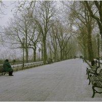 Приморский бульвар засыпало снежной крупой :: Людмила