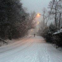 Вечерний снегопад :: Мария Андрейчук