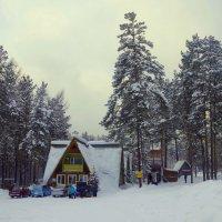 Лыжная база. :: Вера Литвинова