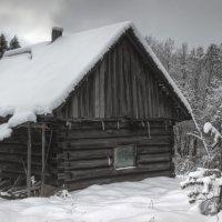 По черному в белом :: Андрей Троицкий