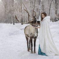 зимняя сказка :: Viktoriya Balaganskaya